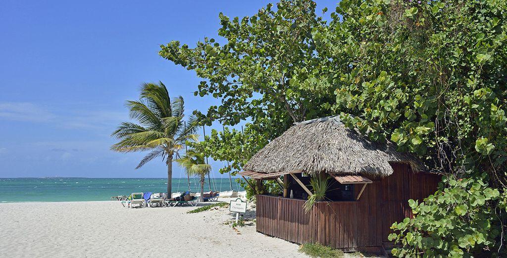 Vous n'avez rien contre les plages de sable blanc bordées de palmiers ?