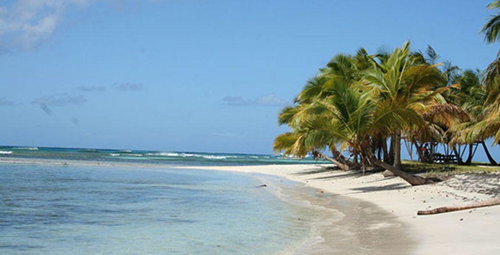 Bienvenue sur l'île Mustique !