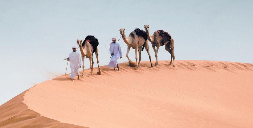 A vous Abu Dhabi..!