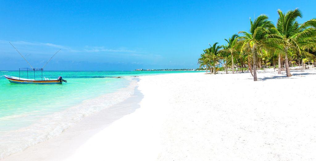Évadez-vous sur des plages de rêve, de Miami au Mexique !
