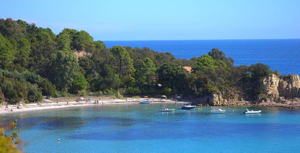 Bienvenue en Corse ! - Résidence Les Jardins de la Mer Bravone