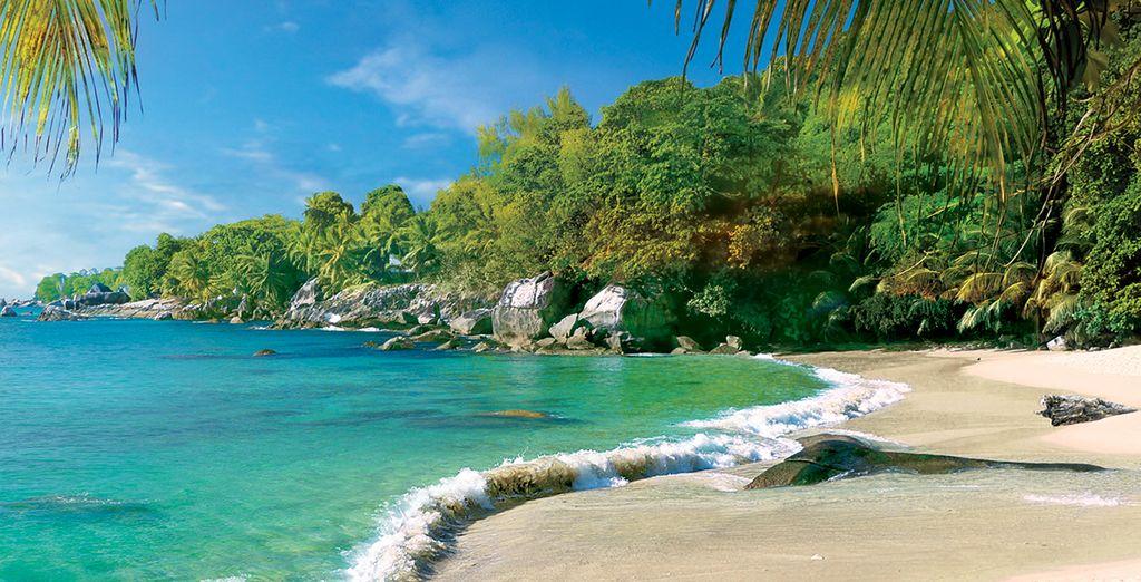 Prenez le soleil sur l'une des plages...