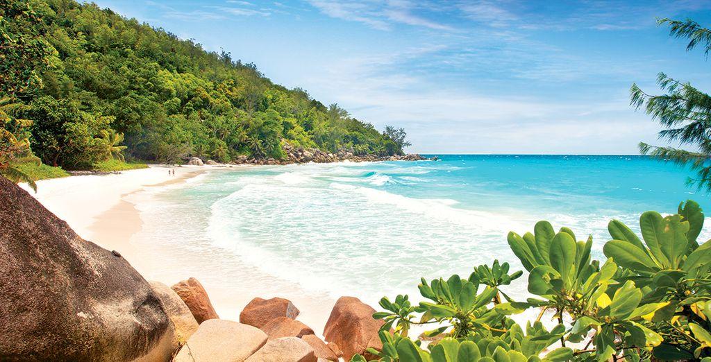 Craquez pour une croisière de rêve aux Seychelles