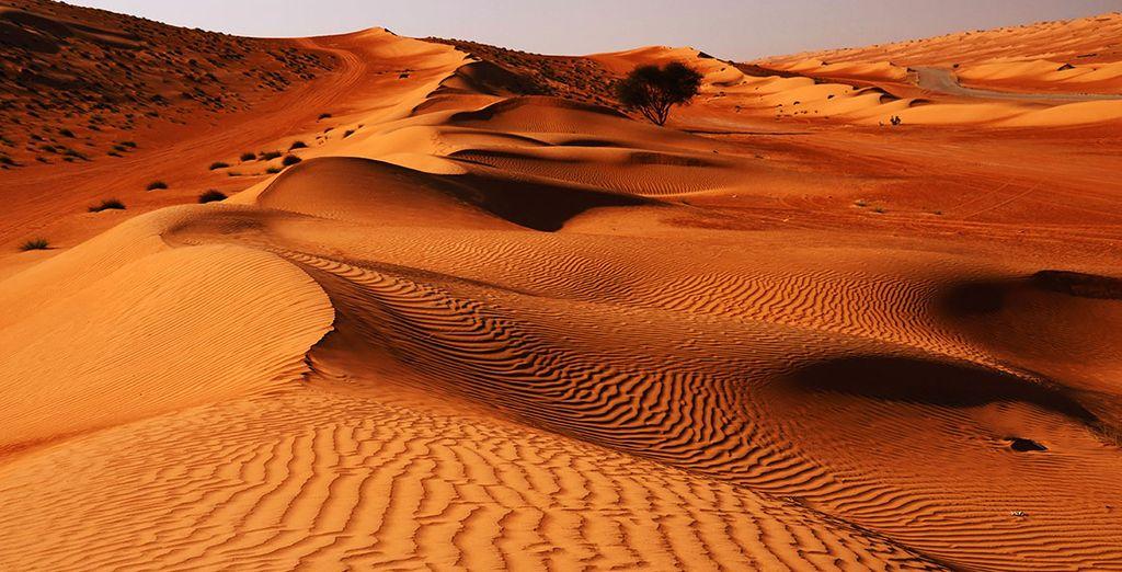 Mais aussi désert de sable fin à perte de vue