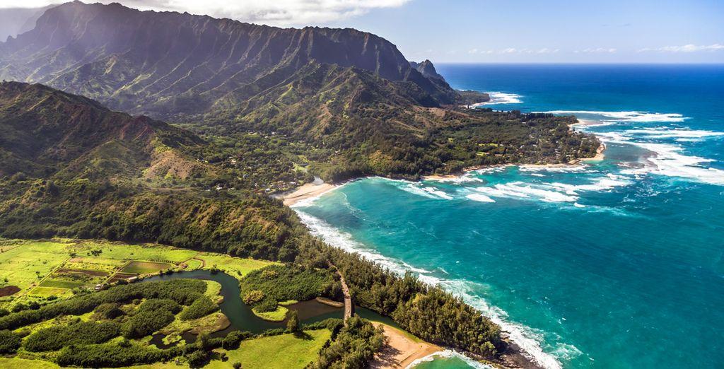 Paysage de l'une des îles d'Hawaii