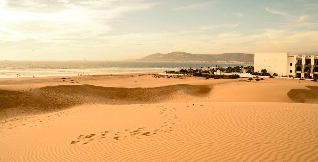 Offrez vous une ballade dans le désert