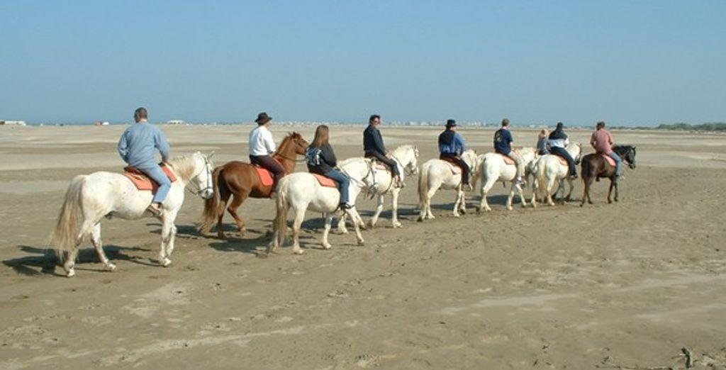 Une balade à cheval en Camargue