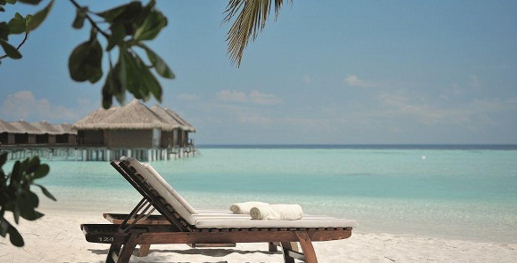 Ou dans les eaux chaudes et cristallines de la plage