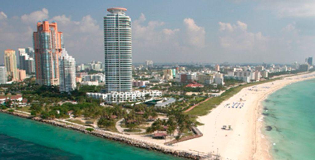 Dans l'effervescente ville de Miami