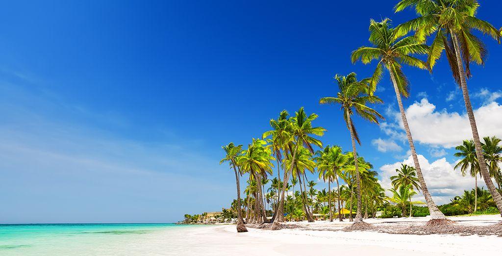 Envolez-vous pour Punta Cana