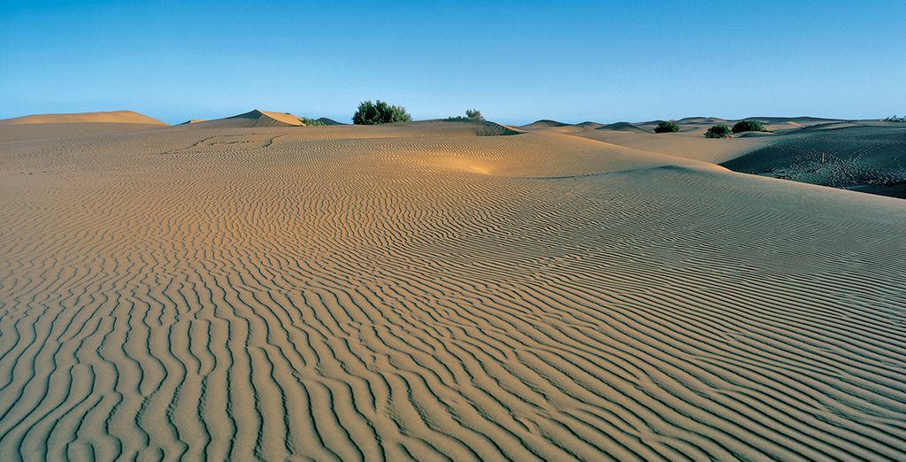A vous les dunes de sable...