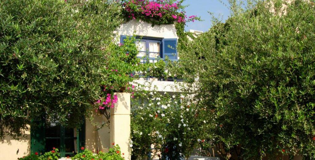 Vous séjournerez en bungalow Vue Jardin ou Piscine