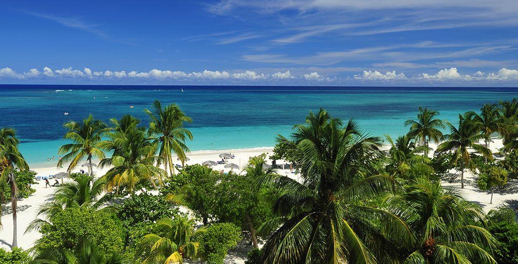Rejoignez ensuite les plages de sables blanc de Cayo Santa Maria