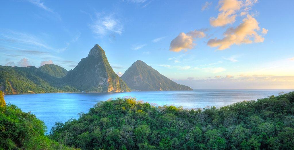 Sur la magnifique et luxuriante île de Sainte-Lucie