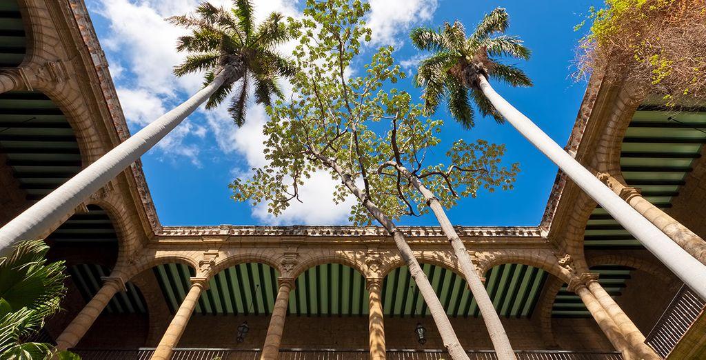 Plongez au cœur de la Havane...