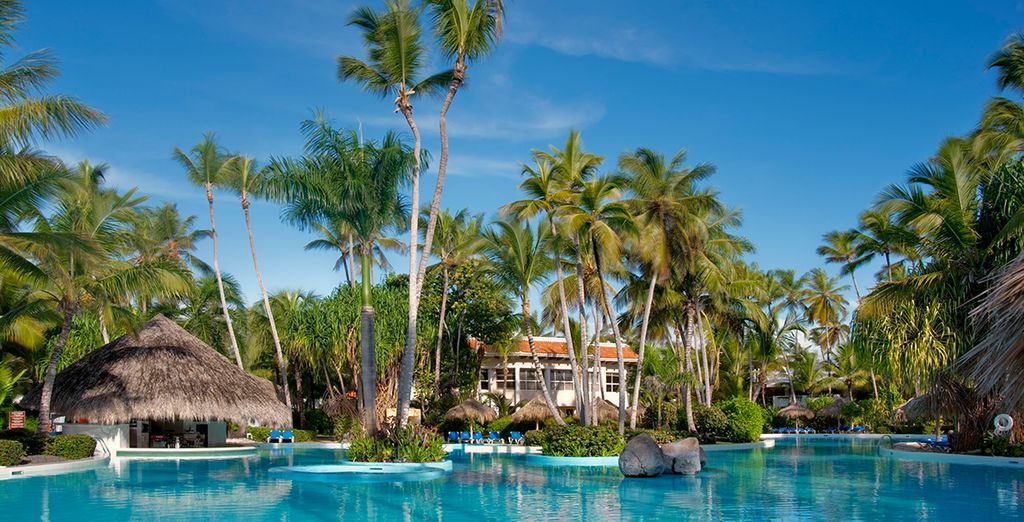 Vous êtes bien arrivé au Melia Sol Caribe 5*, l'un des plus beaux resort de Punta Cana !