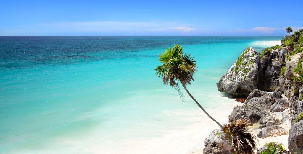 Et de plages paradisiaques ?