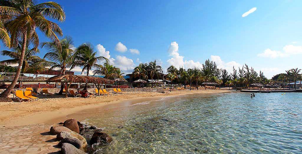Sur une plage paradisiaque des Caraïbes...