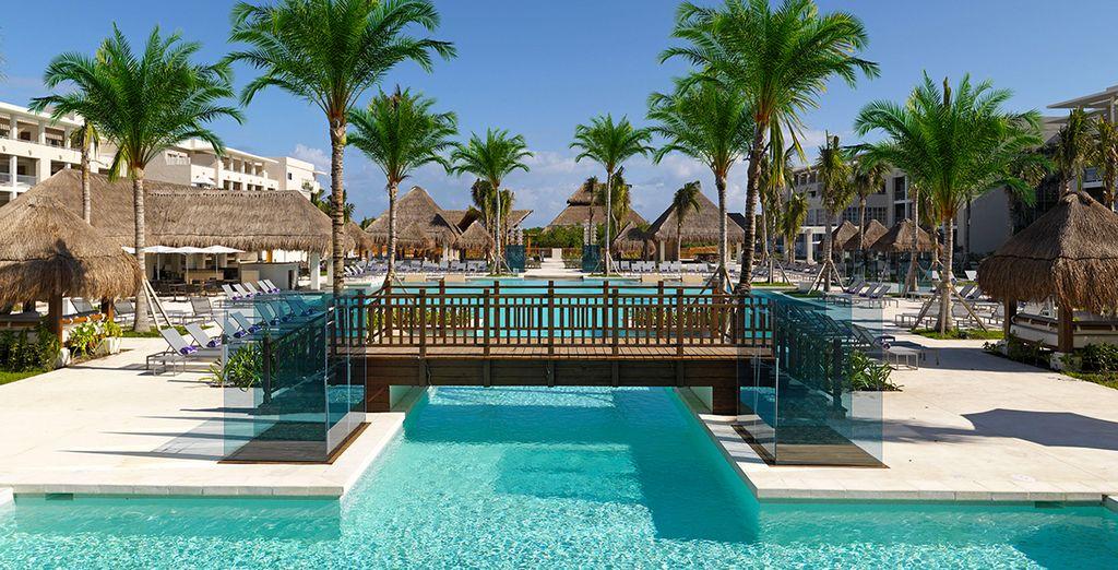 sous le soleil tropical du Mexique !