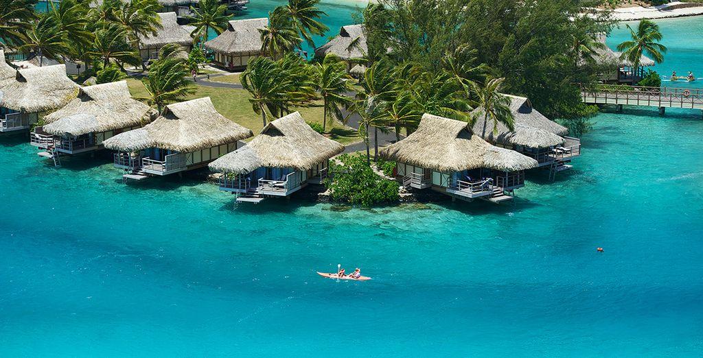 Au bord d'un lagon turquoise et transparent