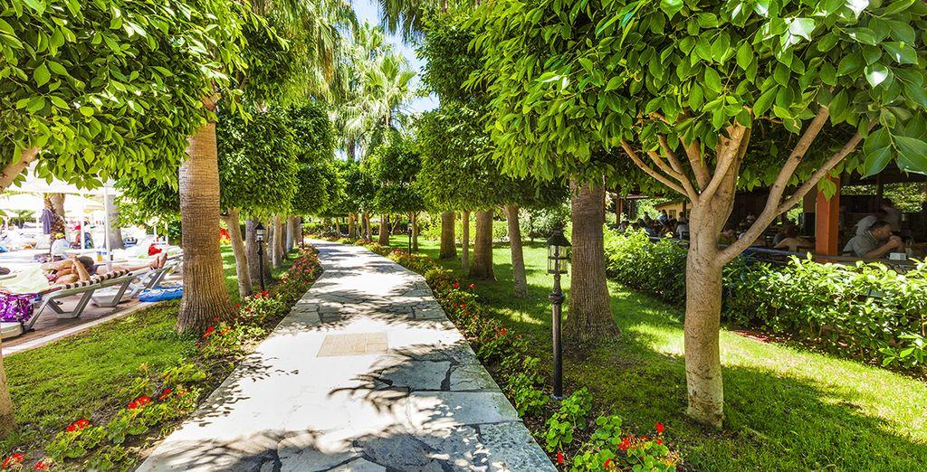 Et aux jardins luxuriants