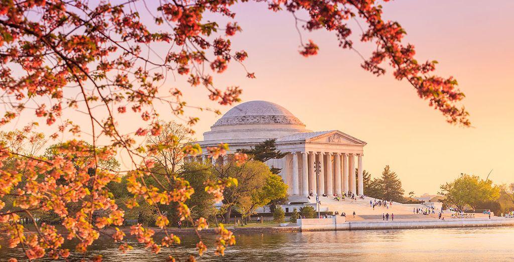 Washington et ses monuments seront votre dernière étape