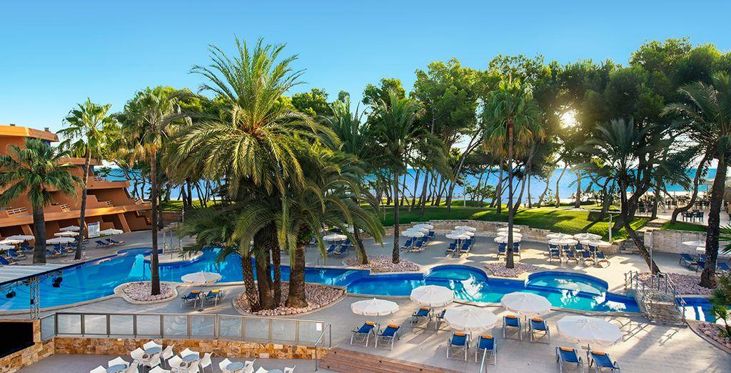 Une vaste piscine avec vue sur la mer...