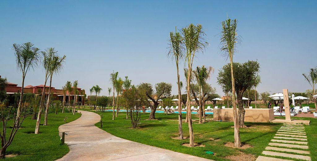 Dans un environnement verdoyant, à quelques minutes de Marrakech