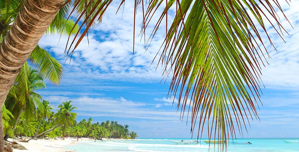 Excellent séjour au cœur de la République Dominicaine !