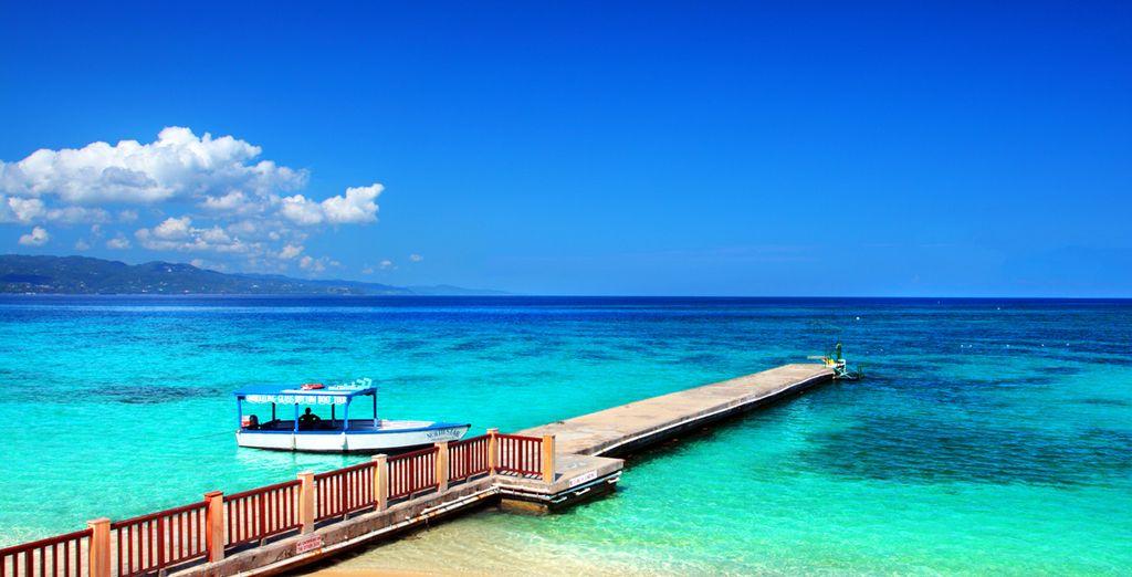 Envie de visiter la Jamaïque ?