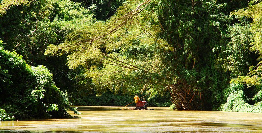 Ou encore la rivière Martha Breae