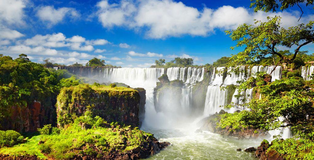 Paysage de parc naturel en Argentine