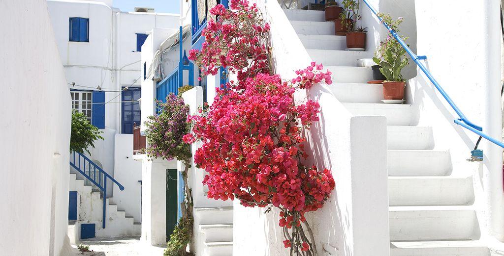 Peut-être déciderez-vous de partir à la découverte des charmes de Mykonos...
