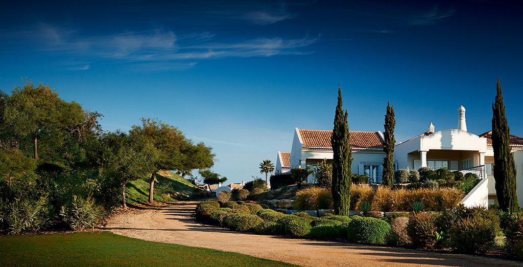 Appréciez un cadre naturel - Vale d'Oliveiras Quinta Resort & Spa 5* Carvoeiro