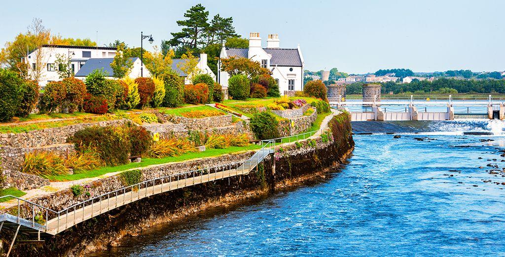 Avant de partir pour Galway, la belle endormie...