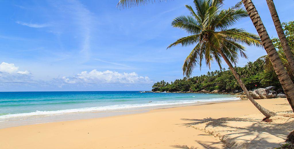 Dans la région tranquille de Khao Lak à 1h environ au nord de Phuket - The Leaf on the Sands by Katathani 4* Khao Lak
