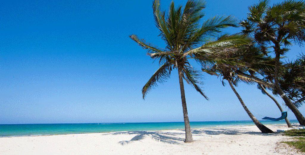 Alors suivez-nous sur Diani Beach au Kenya