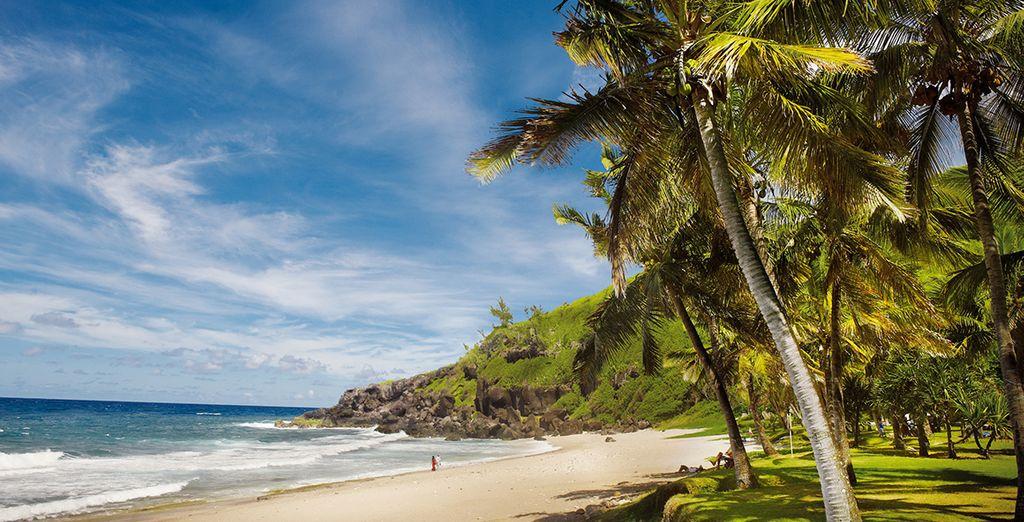 Puis prenez le cap au sud, direction la plage de Grand Anse
