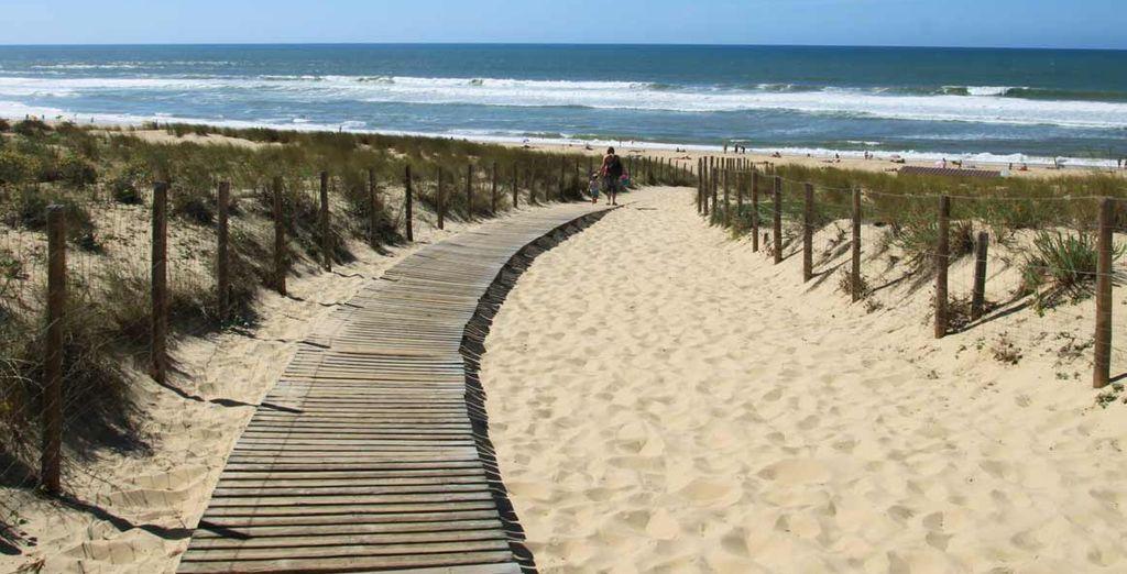 Accordez-vous un moment ensoleillé sur la plage