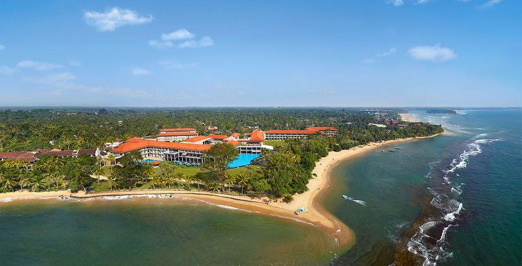 N'attendez pas plus longtemps et venez découvrir le Sri Lanka