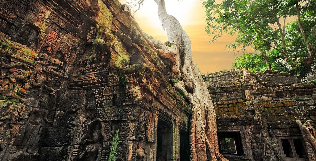 De l'exceptionnel site d'Angkor aux temples enfouis dans la jungle