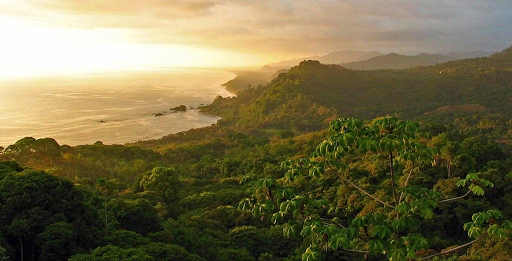 Détendez-vous face aux magnifiques paysages du Costa Rica