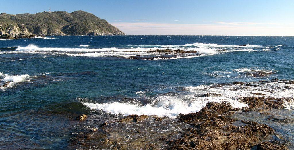 Six-Fours-Les-Plages, le Brusc et l'île des Embiez n'attendent que vous