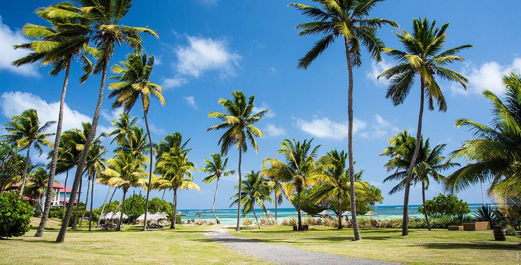 Ou une pause farniente à la plage