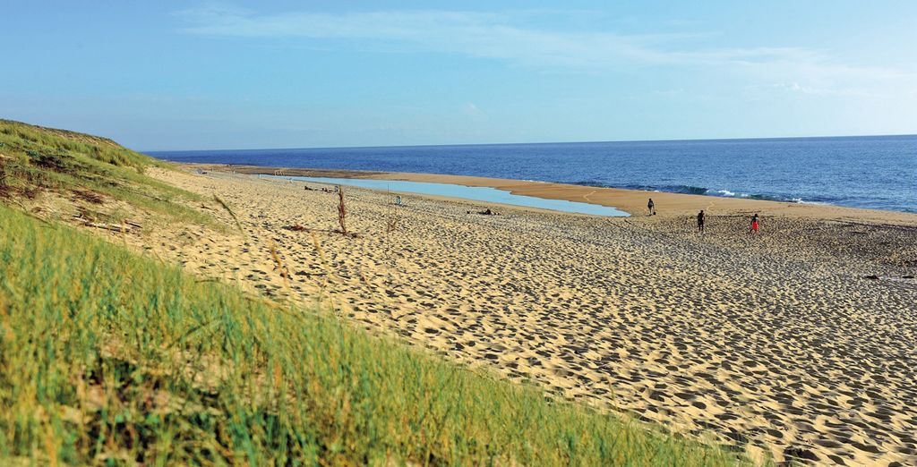 Longues balades sur la plage...
