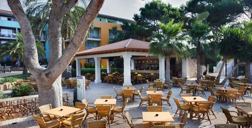 Profitez d'un restaurant en terrasse ensoleillée...