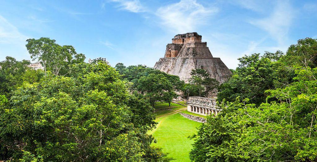En option, vous pourrez choisir de débuter votre séjour par une découverte du Yucatan, terre de mystères...
