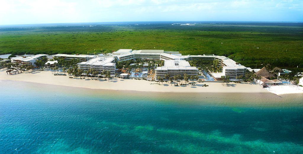 Entre la mer des Caraïbes et la lagune de Cancun...