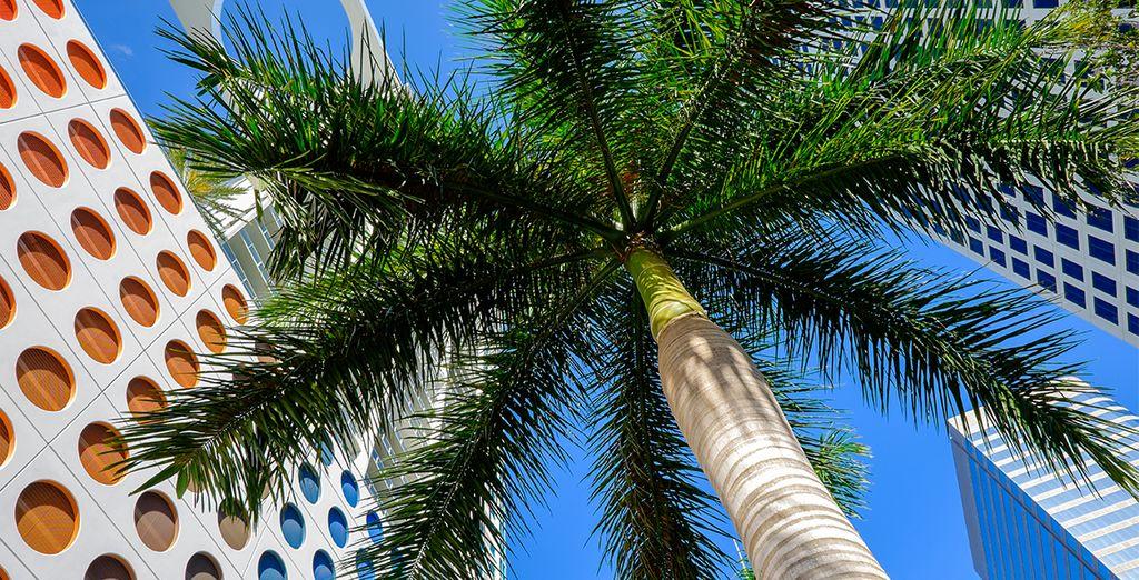 Explorez la ville à la découverte de l'architecture Art Déco qui fait le charme de Miami