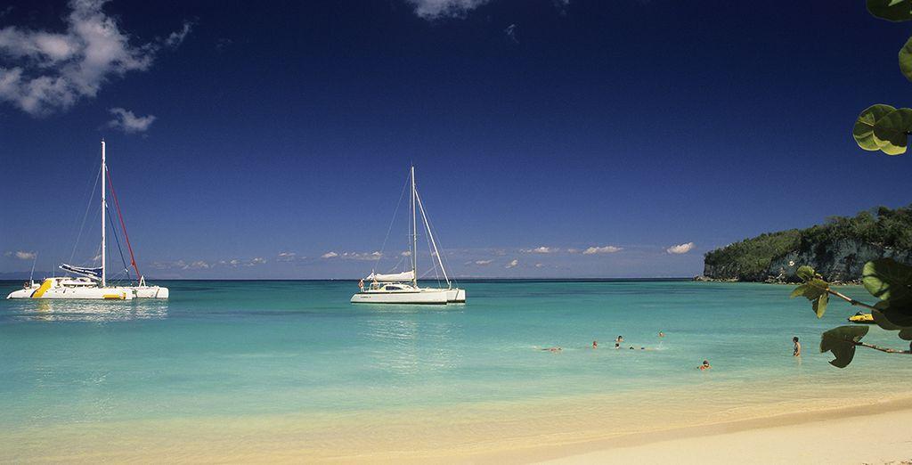 Bon séjour sous le soleil des Antilles !